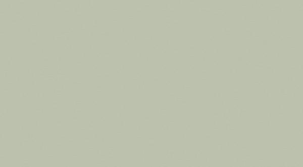 Matte Succulent S047