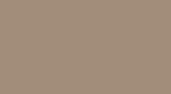 Stone Grey Matte S032